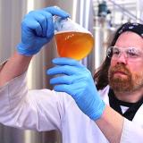 bierlab