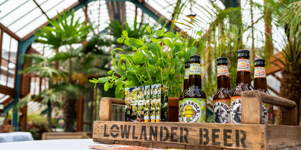 lowlander-beer
